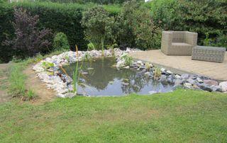 étang de jardin