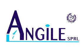 Logo Angile
