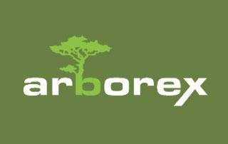 logo Arborex