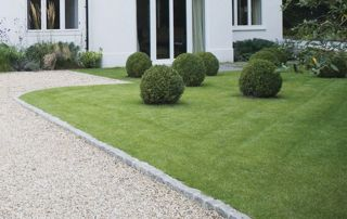 Buis et jardin entretenu