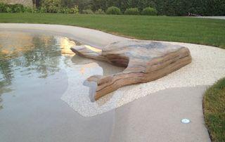 Rocher piscine