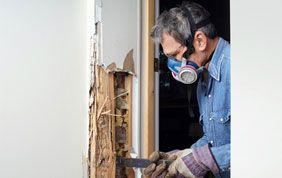 expert en traitement de bois humide d'une porte intérieure