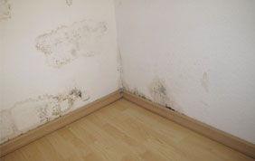 mur intérieur blanc endommagé par des taches d'humidité