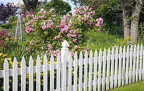 clôture basse blanche et fleurie