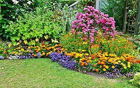 Entretien jardin Brabant wallon