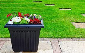 décoration et sentier sur pelouse