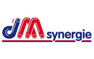 DM Synergie logo