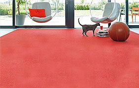 grand tapis rouge dans salon