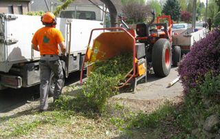 évacuation branches et déchets