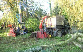 machine à détruire les branches
