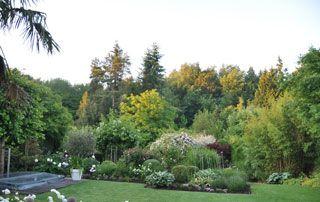 belle pépinière ornée de fleurs arbres arbustes