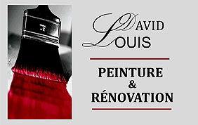 logo david louis peinture et rénovation
