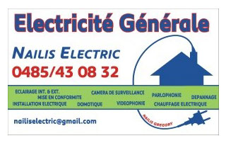 logo Nailis Electric