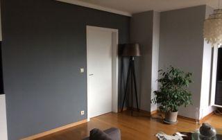 murs de couleur grise salon