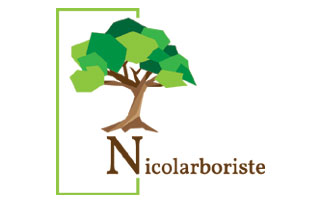 logo Nicolarboriste