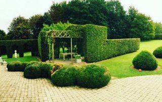 beau jardin bien entretenu