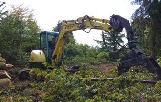 évacuation arbre avec grue