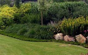 plantations et pelouse fraîchement tondue