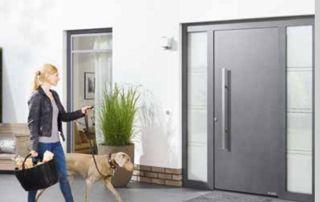 Porte entrée vitrée grise femme chien promenade