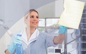 Nettoyage de vitres par une pro