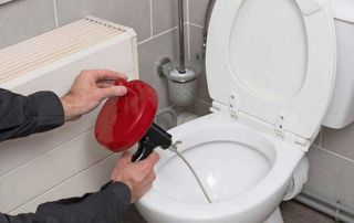 Inspection par caméra WC