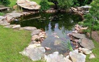 étang d'ornement