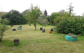Entretien jardin et pelouse