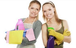 aides-ménagères avec produits
