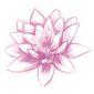 Logo A fleur de peau