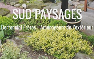 SUD PAYSAGES - Antibes