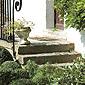 escalier extérieur pierre et plantes