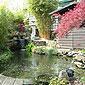 étang avec abri de jardin et plantations