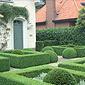 aménagement jardin buissons