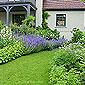 aménagement pelouse et parterres