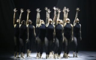 danseuses justaucorps noirs