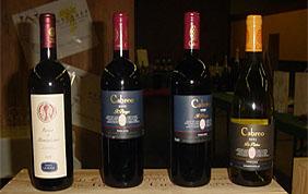 Maison de vin à ARLON