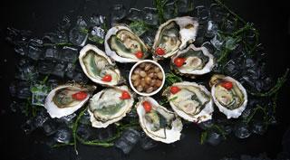plateau d'huîtres