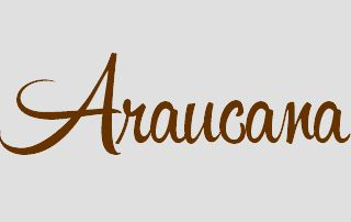 logo restaurant araucana