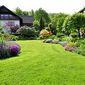 Jardin avec grande pelouse et arbustes