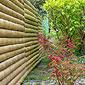 Portail en bambou