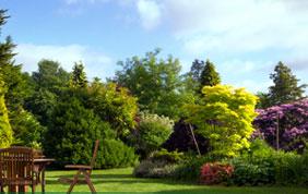 entreprise de jardin Charleroi