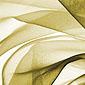Tissus de couleur blanche