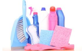 Une aide ménagère via les titres services