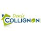 Logo Denis Collignon