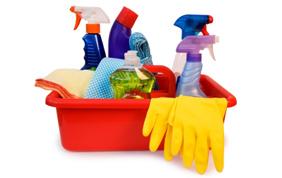 Une aide ménagère en titres services