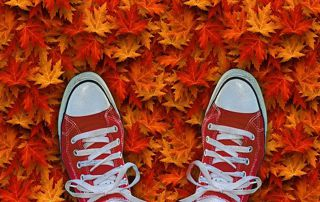 baskets automne