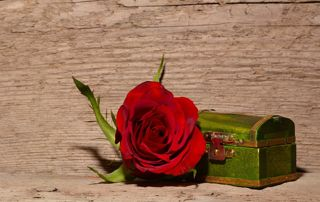 Image cercueil