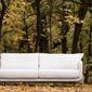 Canapé blanc dans la forêt