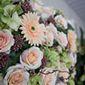Bouquet de fleurs rose pâle