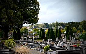 Cimetière de Namur (avec fleurs et pierres tombales)